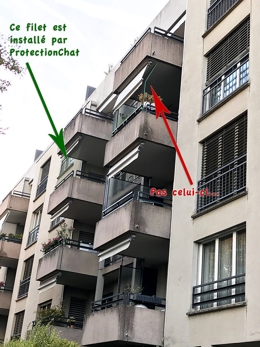 Filets Verts Protection Chat